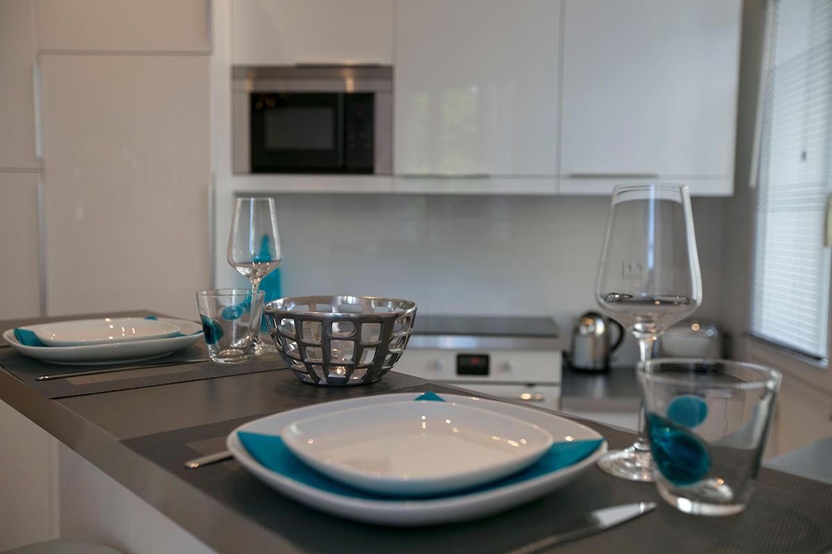 rent in Paris confort equipped apartment year