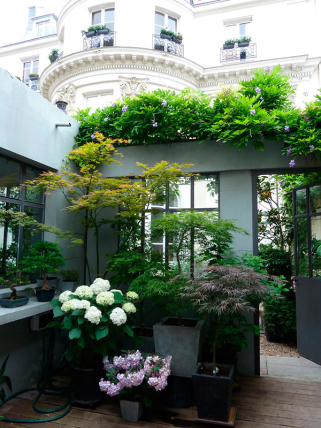 Patio apartment Paris Grands Boulevards