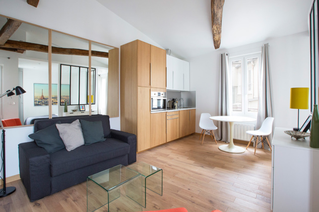 living Paris apartment rue Dauphine Paris