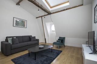 living room with double sofa bed apartment for rent in Paris
