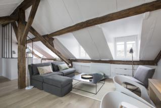 living-room Paris sofa cushions