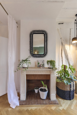 appartement meublé plantes