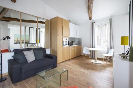 Furnished apartment rental in paris for Amenagement salon