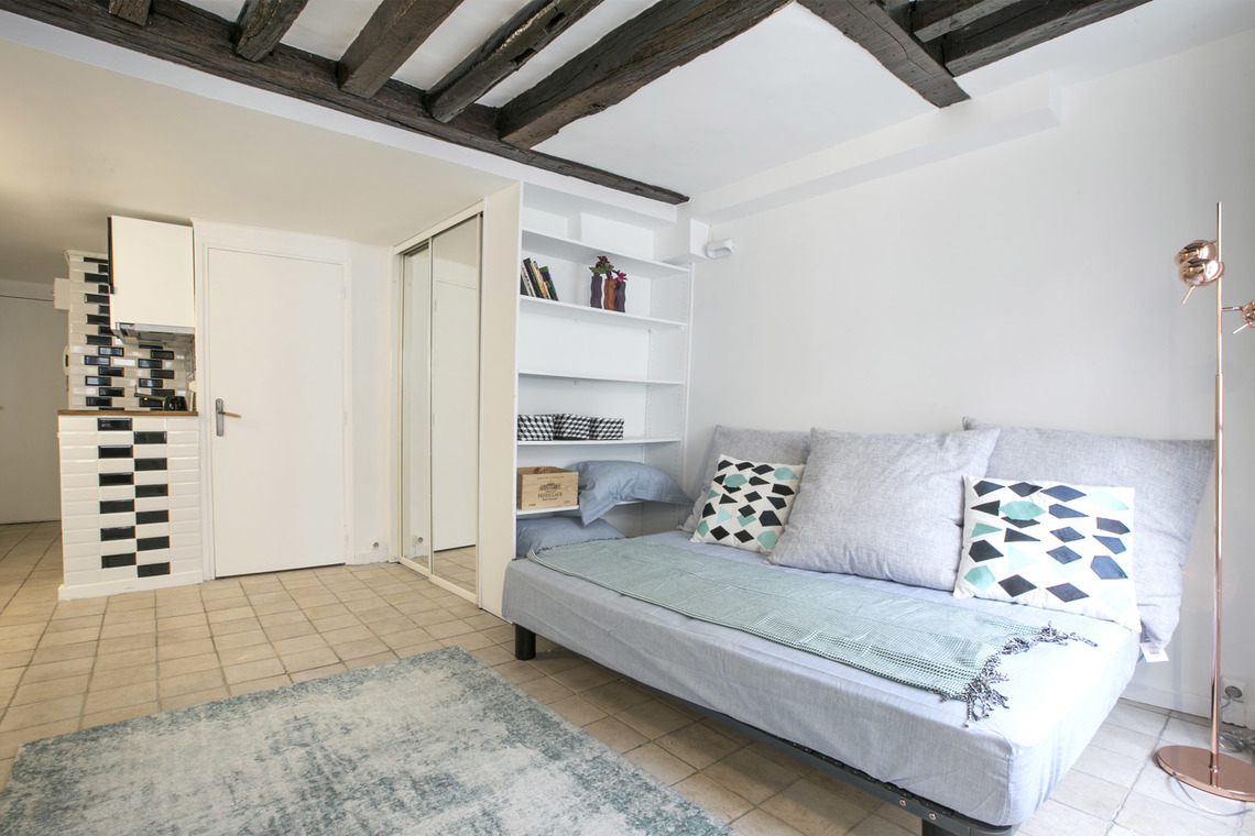 Apartment Paris Rue Geoffroy l'Angevin 3