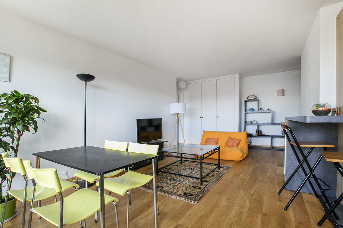 Paris Rue Saint Saens Apartment for rent