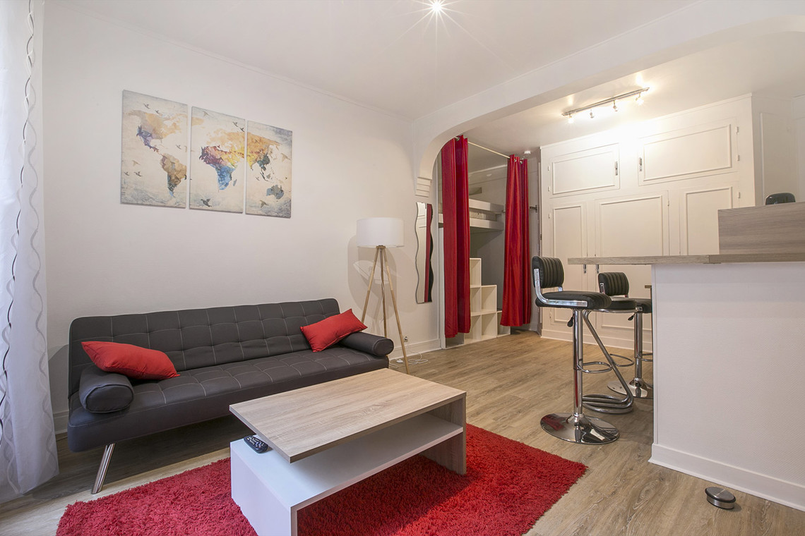 Apartment Paris Rue Dobropol 2