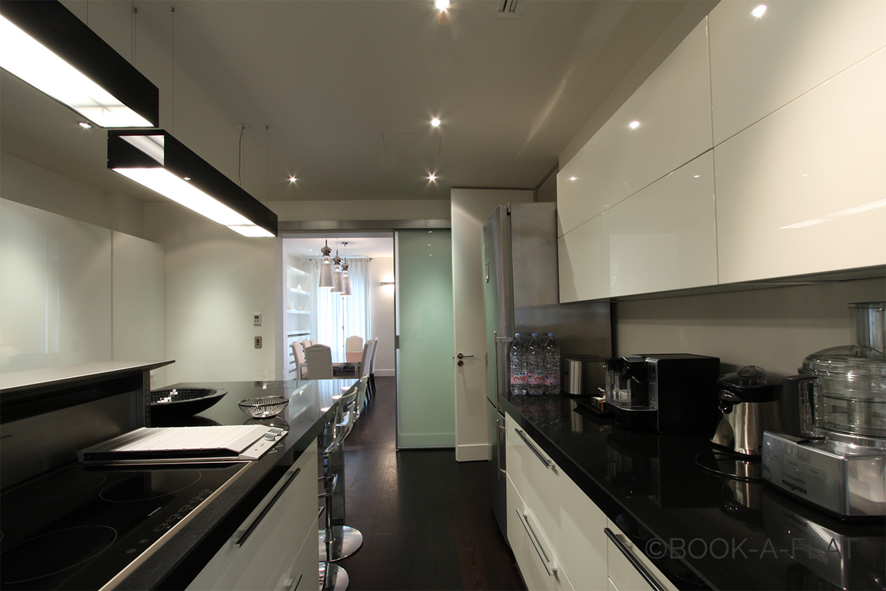 Apartamento Paris Avenue Franklin Roosevelt 8