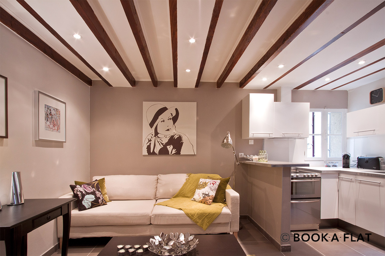 Apartment Paris Rue Lecourbe 2