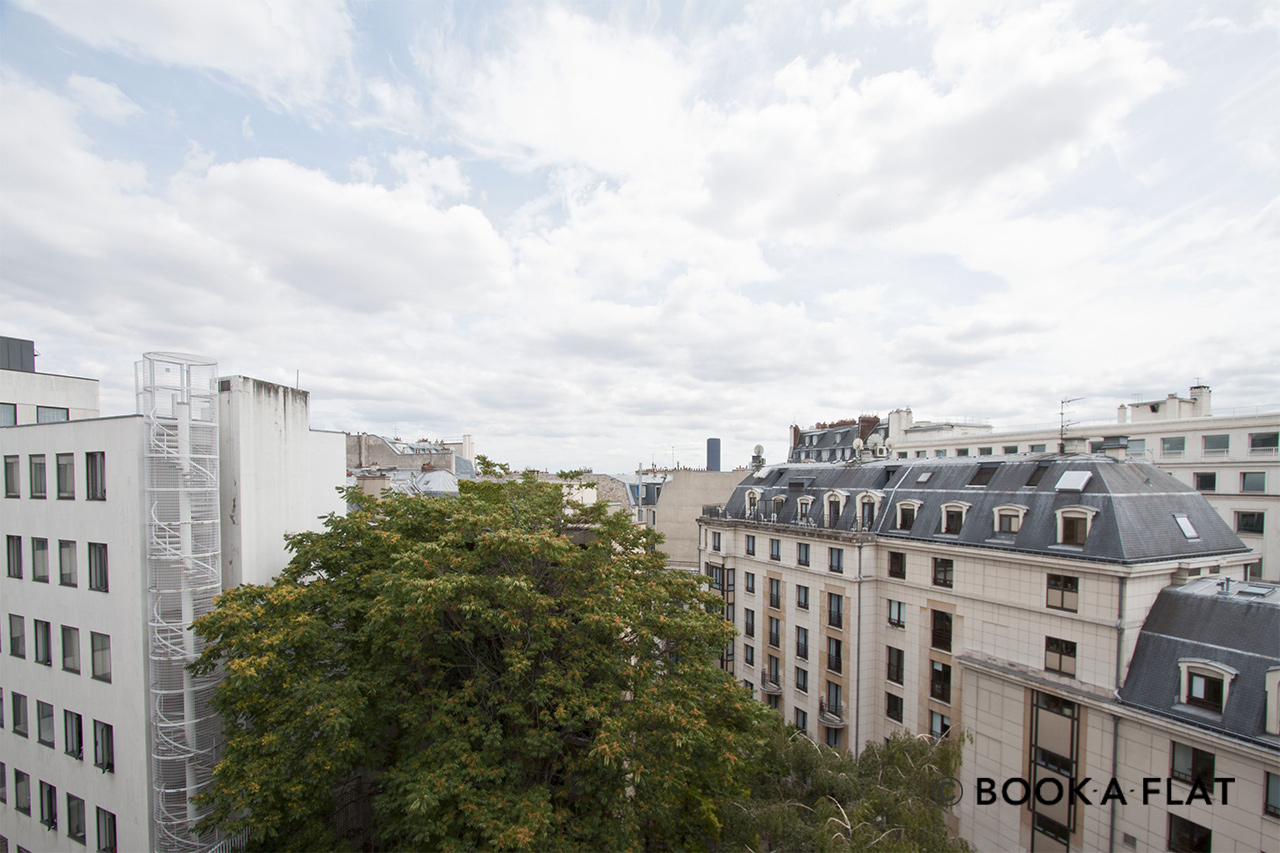Apartment Paris Rue Jean Goujon 10