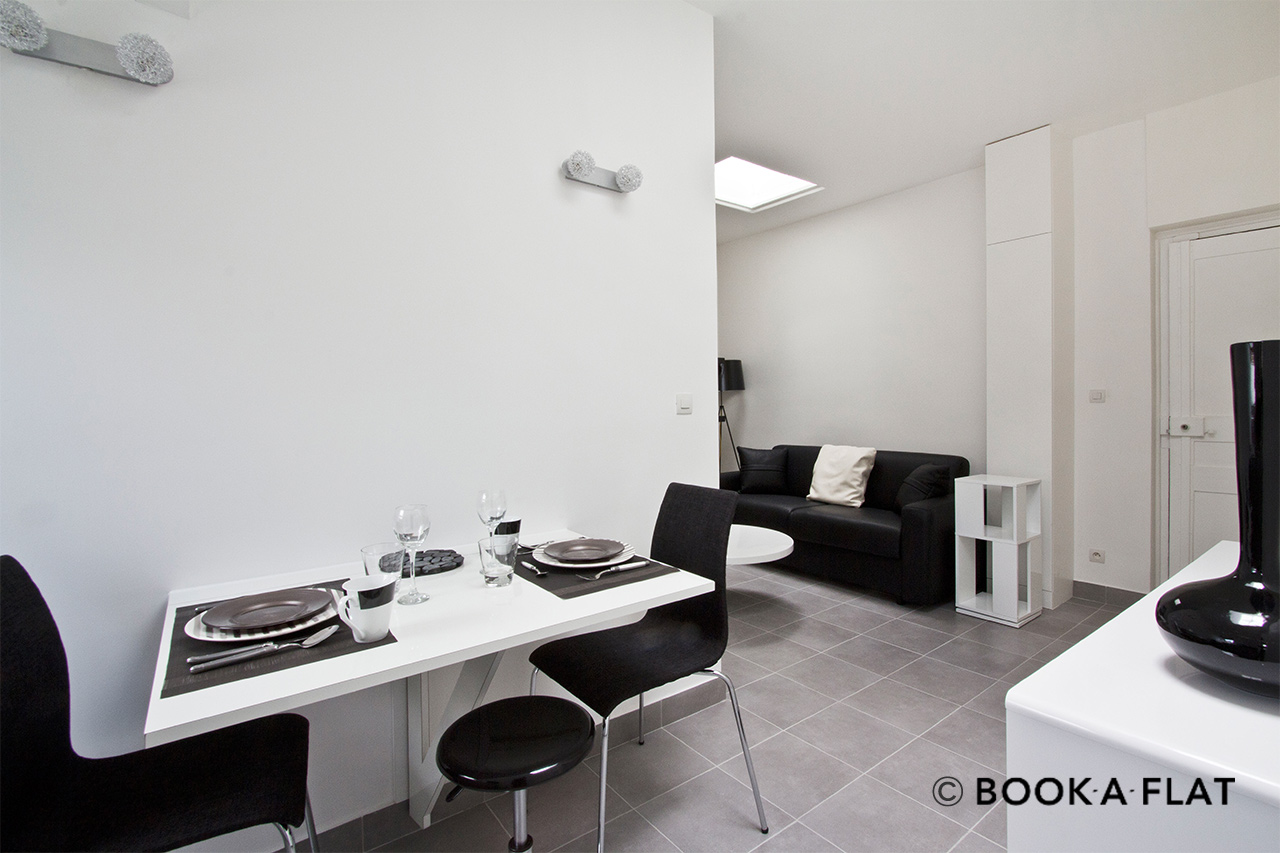 Appartement Paris Rue Bayard 4