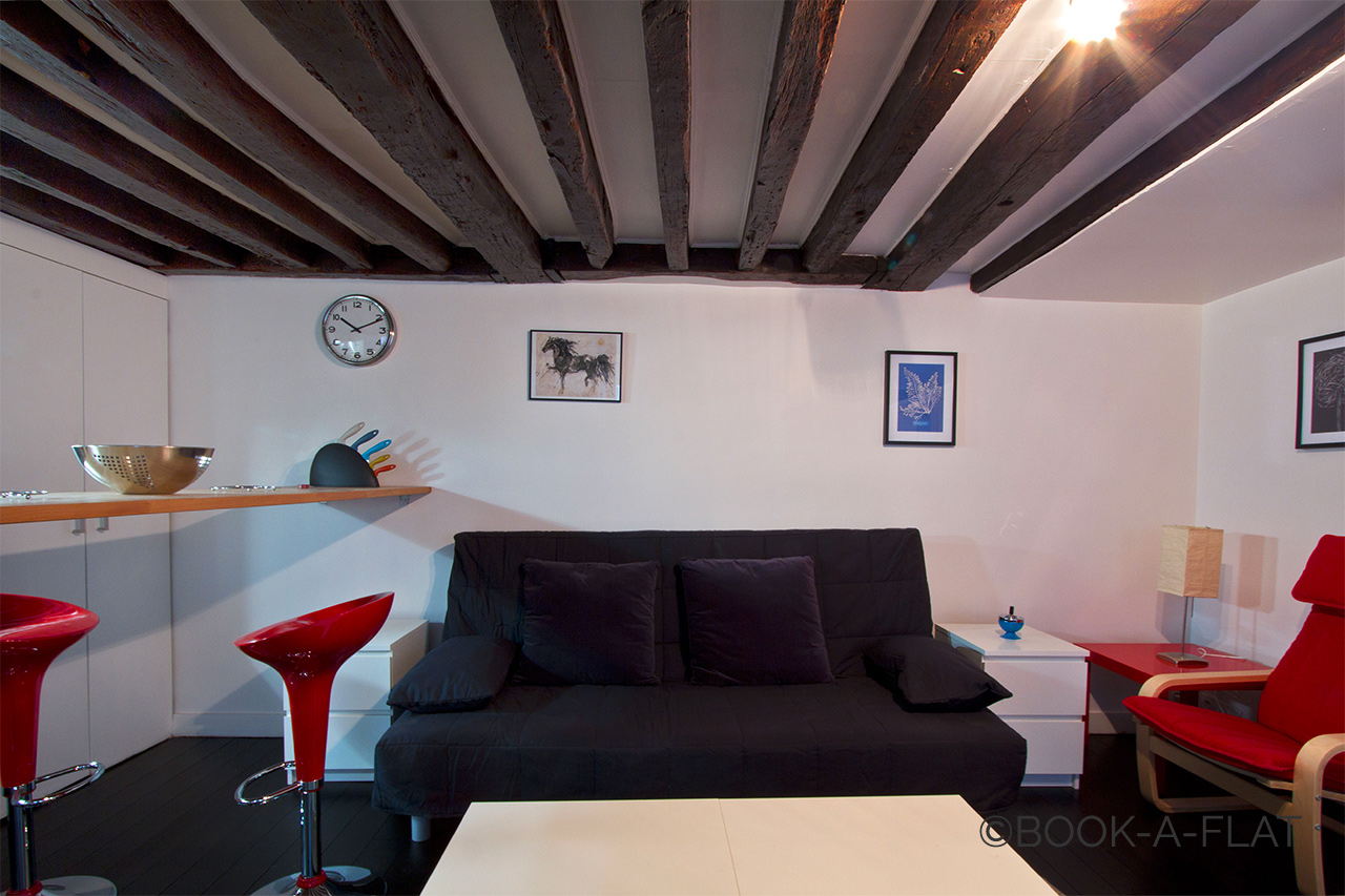 Appartement Paris Rue Charlot 2